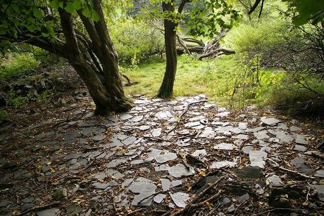 Ruin near Cefn y Coed