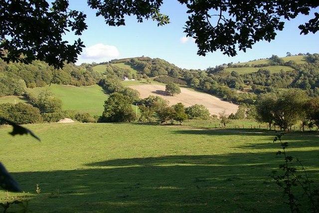 Farmland at Cwm Nant-y-meichiaid