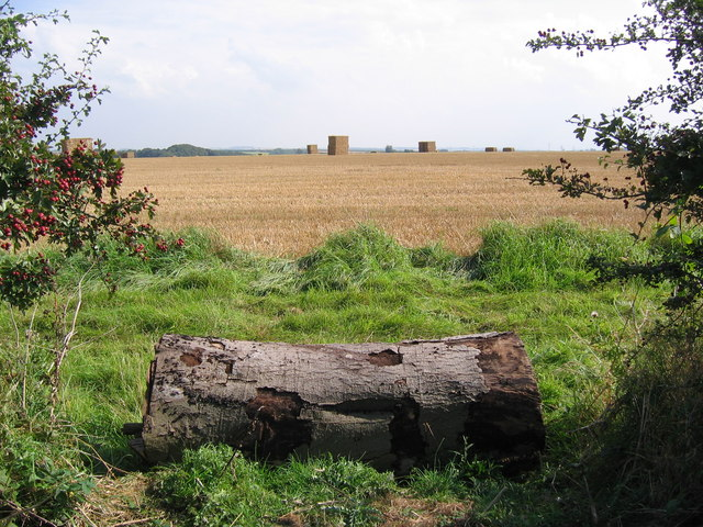 Lincolnshire Wolds Farmland