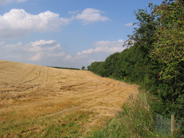 Farmland, Badger Hills