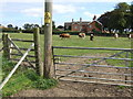 TF3264 : Second gate to St Andrews graveyard, Miningsby by Dave Hitchborne