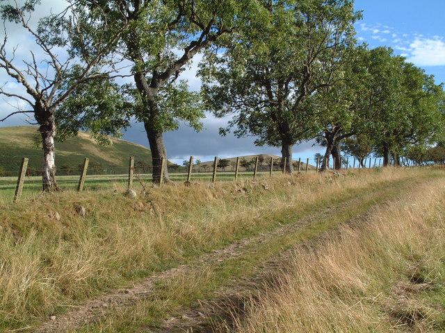 Track near Ingram