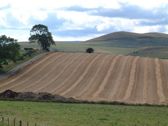 Field near Mile Moor