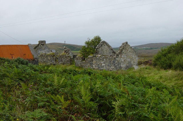Ruined cottage and shed - Meendrain Townland