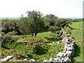 SX1369 : Bury Castle by Gareth