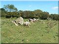 SX1369 : Cardinham Leat rocks by Gareth