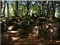 SX1369 : Green rocks by Gareth