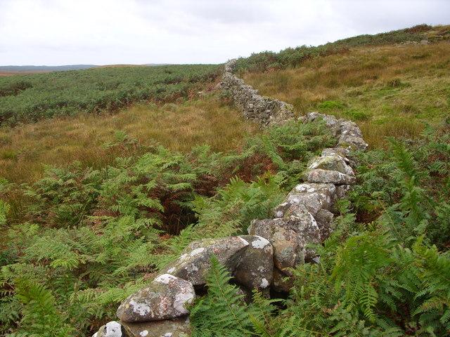 Drystane Dyke at Craigmoddie