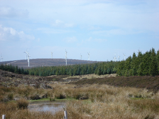 Gap in the Trees with turbines
