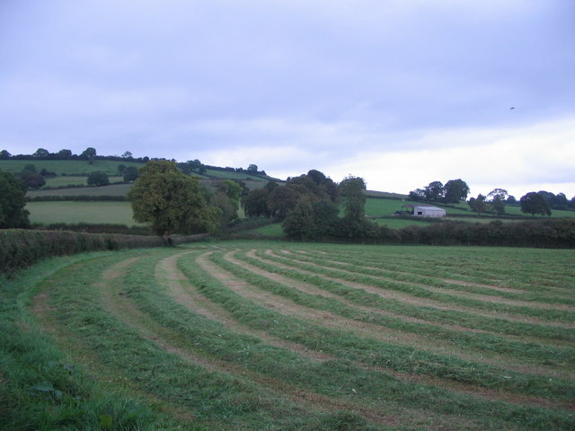 Farmland off Westcombe Road