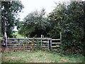 SJ6648 : Stile on Footpath by Ian Bottomley