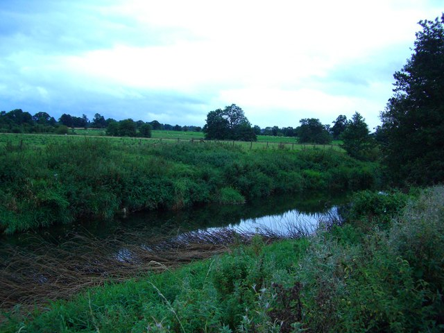 The overgrown bank of The River Lyvennet