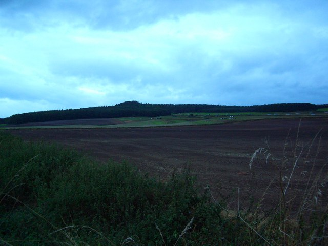 Farmland at Julian Bower with Whinfell Forest in the distance