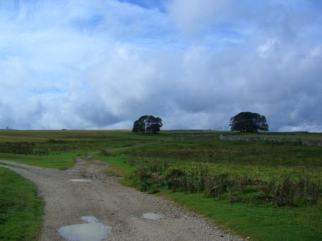 The Track from Town Head to Oddendale