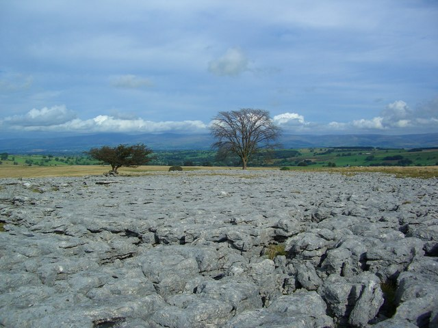 Limestone Pavement at point 357mtrs