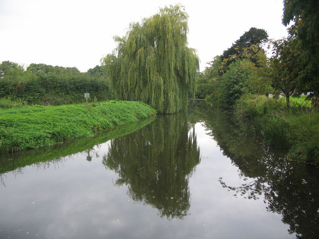 The River Brue at West Lydford