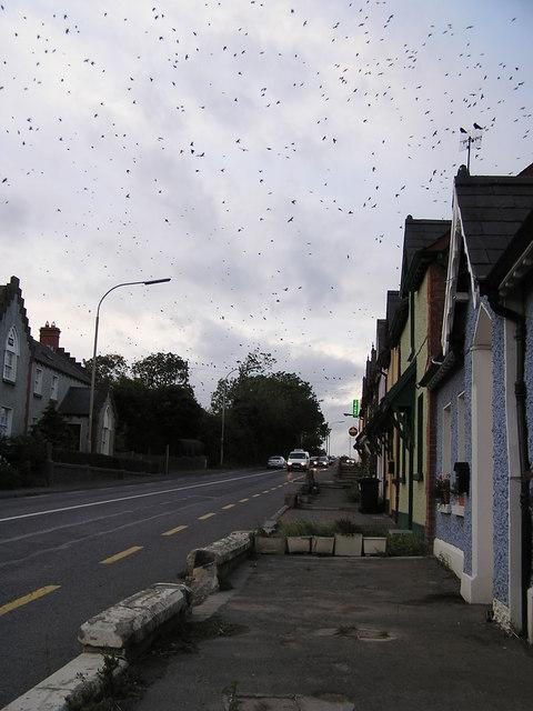 Julianstown Village