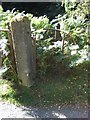 NO7696 : Gatepost and stile at Mills of Drum by Stanley Howe