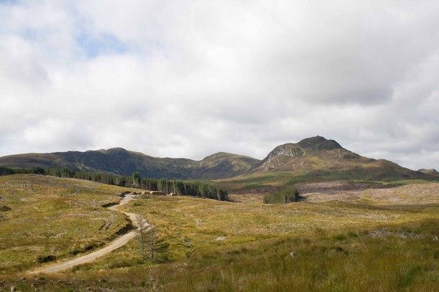 Clear Felling near Loch nan Gillean