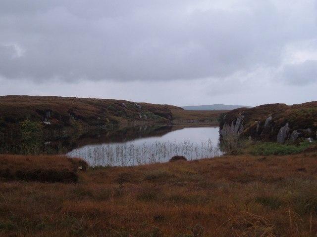 Tully Bog
