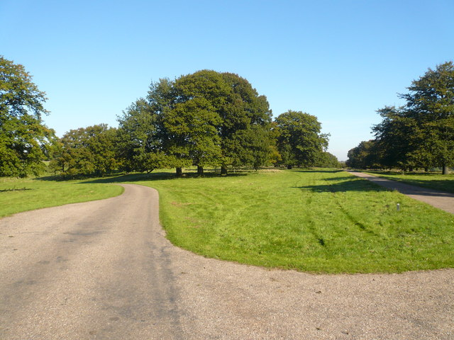 Hardwick Park - Road Junction
