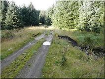 NS5113 : The bridge over Black Water burn by david johnston