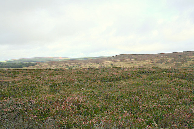 Northeast  of The Drum