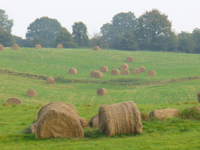 Harvest near Burrows Cross