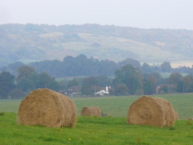 Hay Bales by Burrows Cross