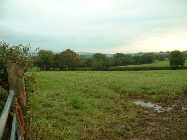 Farmland near Coed Adam
