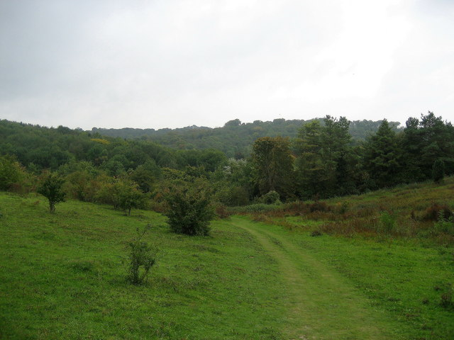 Ridgeway descending towards Lower Cadsden