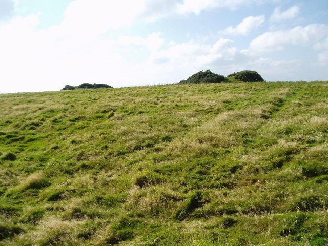 Tumuli or ancient burial mounds on Week Down