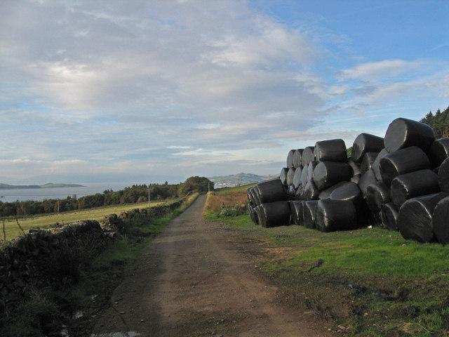 Southannan Mains farm Road