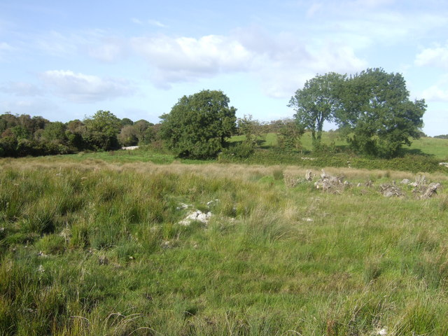 Countryside west of Galway city