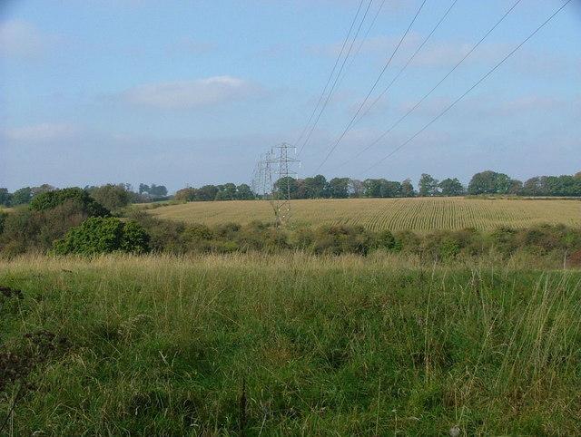 Pylons across the fields