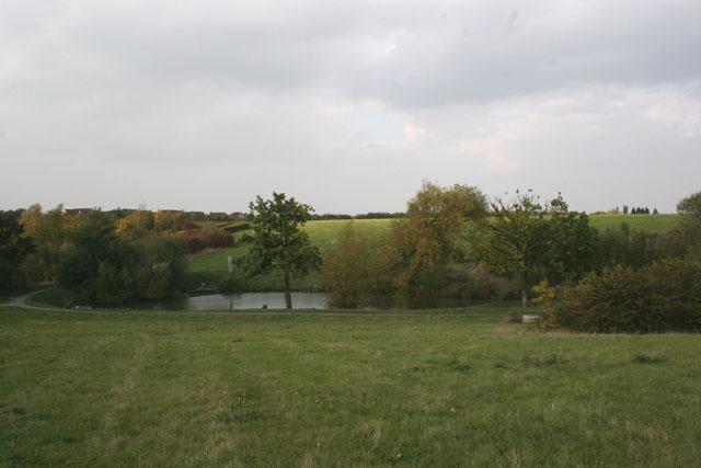 Sweyne Park Pond
