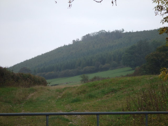 View of Callow Hill from Lower Dinchope