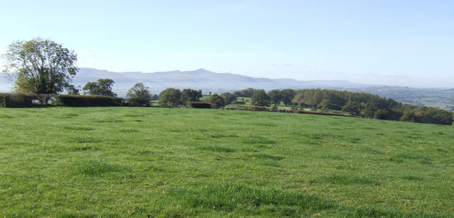 Pasture west of Heol-y-Cefn