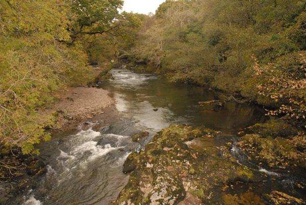 The upper River Tawe looking north from the roadbridge to Penwyllt