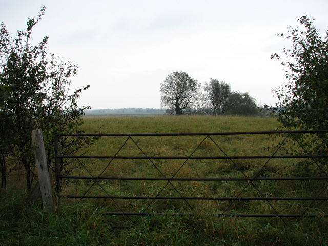 Gate into empty pasture