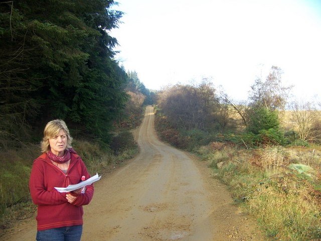 Forest track used for cycle path