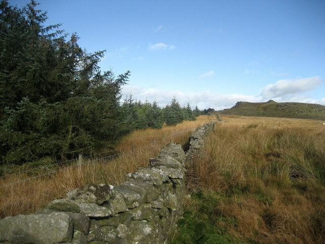 Eastern Edge of Gisburn Forest