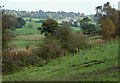 SJ9453 : Farmland and Disused Railway near Denford, Staffordshire by Roger  Kidd