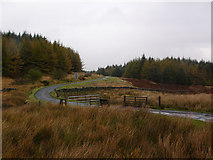 NX2077 : Cattle grid at entrance to Arecleoch Forest by David Baird