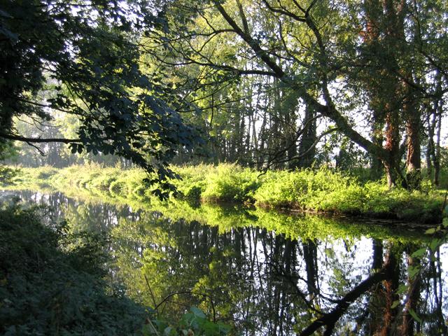 River Cam in autumn, Trumpington, Cambs