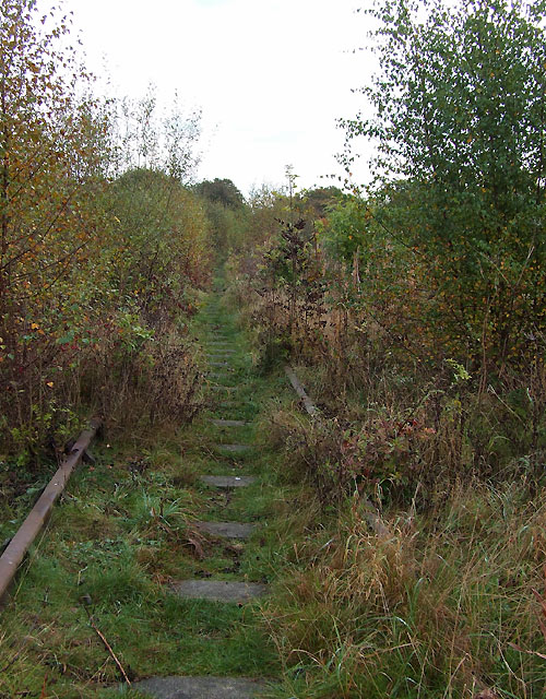 Disused Railway, Stockton Brook, Staffordshire