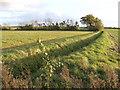 TL2857 : Drainage channel by Hardwicke Road by Jonathan Billinger
