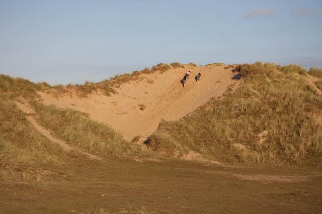 Dune damage