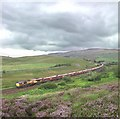SD7991 : Heather on Garsdale Common by Don Burgess