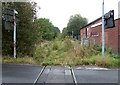 SJ9253 : Disused Railway, Endon, Staffordshire by Roger  Kidd